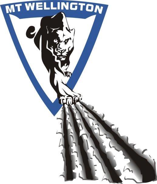 Mt Wellington Panthers logo