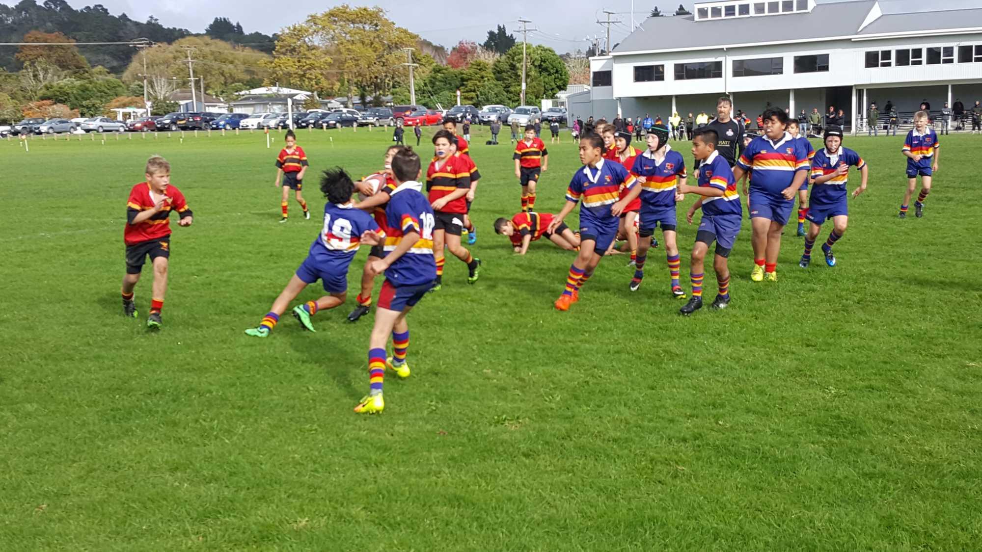 970a213b422 Massey Rugby Football Club - Junior Rugby