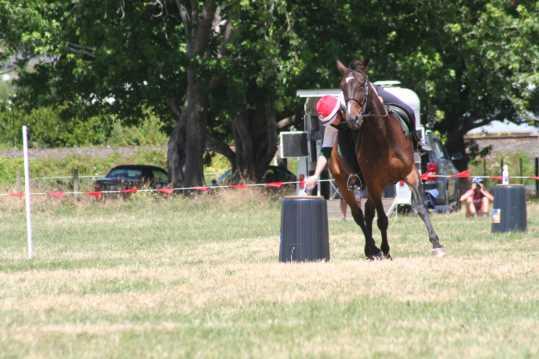 mounted games saddle