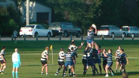 josh renton rugby